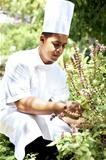 Young chef in fresh herbs garden