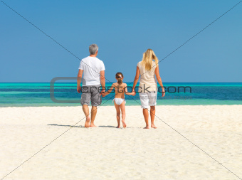 Family walking on the sandy beach in summer