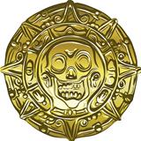 vector gold Money pirate coin with a skull