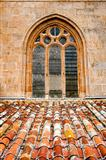 Window of Cathedral