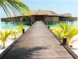 Beautiful beach resort to rejuvenate yourself