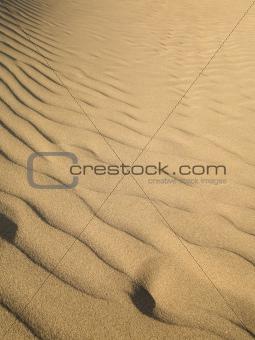 Desert - Dunes
