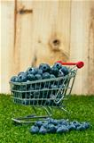 Blueberries in a shopping cart