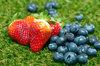 Blueberries and Strawberries on a lawn