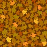 autumn yellow maple leaf seamless background pattern
