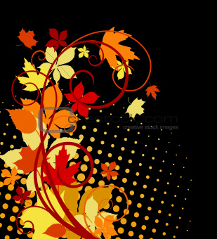 Autumnal leaves