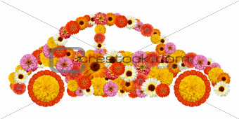 Floral car shape