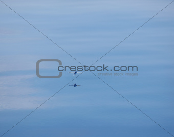Flying over tranquil water
