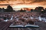 Winter sunrise coming out of pages in magic book