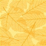 Seamless autumn leaves pattern