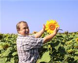 Cheerful farmer with sunflower
