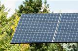 Green Energy - Photovoltaic Solar Panel with Trees