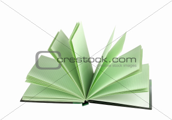 Blank notepad with open lined pages isolated