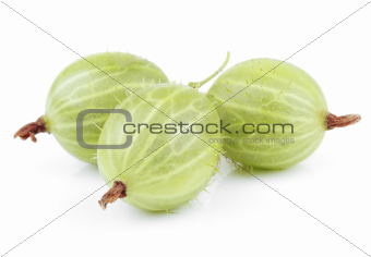 Green gooseberry fruit