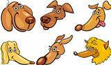 Cartoon funny dogs heads set