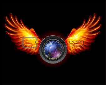 Focus-Fiery wings
