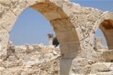 Roman Ruins at Kourion, Cyprus
