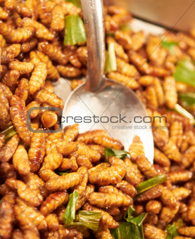 Dishing up a portion of fried larvae