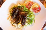 Fried cockroaches served on rice with a salad