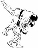 TaeKwonDo/Karate/Judo/Aikido Throw