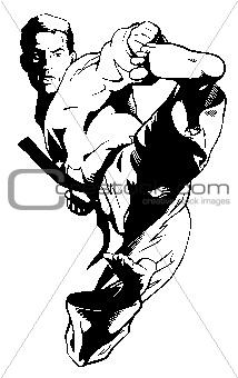 TaeKwonDo Karate Jump Kick