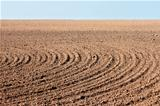 Furrows on autumn field