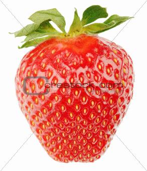 Single strawberry fruit