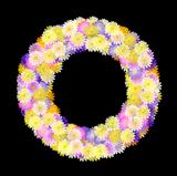 Multicolored Daisy Wreath on black