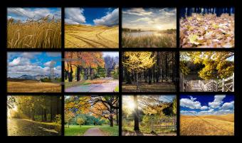Mosaic from autumn photos
