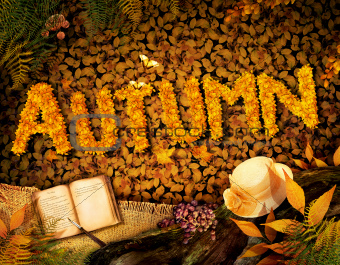 Autumn design - Dear diary