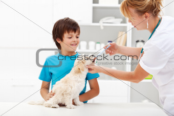 Young boy with his dog at the veterinary
