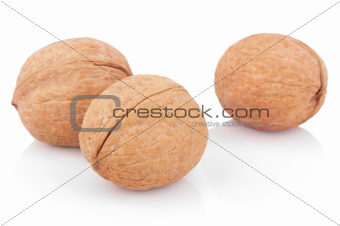 Three walnuts on white