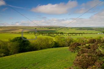 Exmoor National Park near Lynmouth in Devon