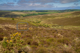 Exmoor National Park near Lynton in Devon
