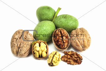 dry and fresh walnuts isolated