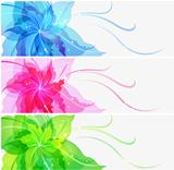 Triple EPS10 colorful flower background