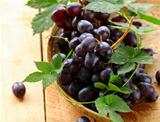brush of organic black grapes with green leaves