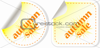 autumn sale stickers set isolated on white