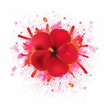 Red Hibiscus Flowers With Blob