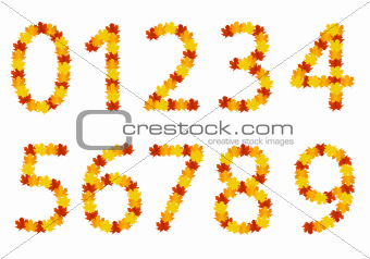 Autumn leaves numbers