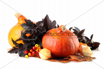 Autumn decoration with hokkaido pumpkins and colorful leaves
