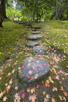 Fallen Maple Tree Leaves on Stone Steps and Moss