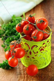 Organic ripe cherry tomatoes on a branch