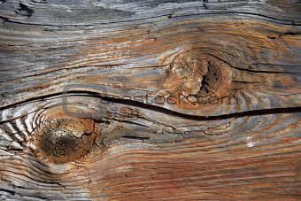 Close up of a brown wooden background
