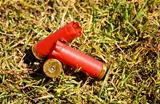 Used fired shells empty red shot gun  bullet cartridges