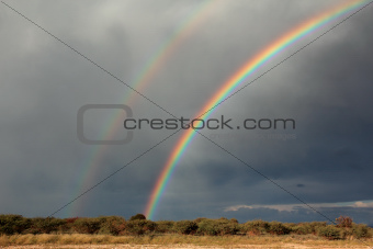 Rainbow landscape