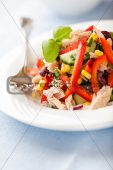 Mixed vegetable and tuna salad with fresh herbs