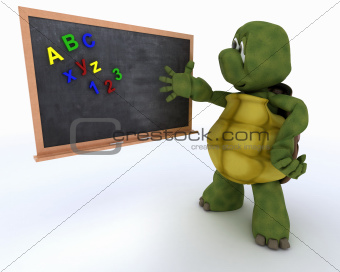 tortoise with school chalk board