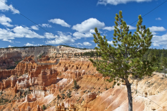 National Park - Bryce Canyon , Utah, USA