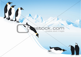 Penguins slide